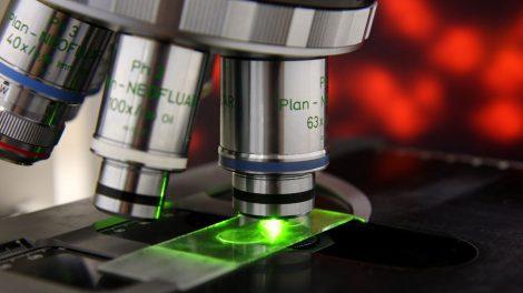 LIF Mikroskop